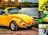 Vabalo nuoma vw kaefer - retro automobilio nuoma (3)