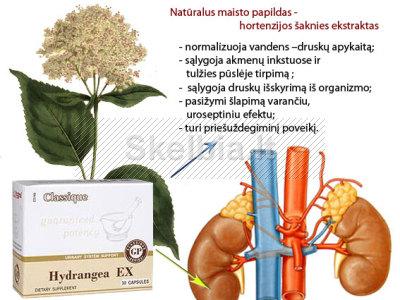 Hydrangea EX - natūralaus inkstų sveikatos palaikymas
