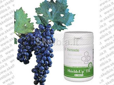 Galingas antioksidantas, stiprina imuninį sistema - Shields Up TR 60