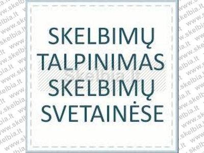Talpinu reklama Lietuvos skelbimu svetainėse internete