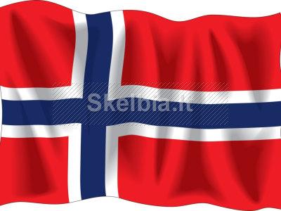 Siuntos, kroviniai į Norvegiją, Švediją 869818264