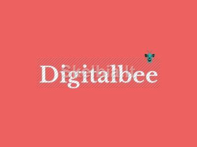 Web svetainių kūrimas, seo paslaugos