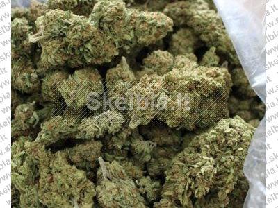 Pirkite geriausią medicininę marihuaną. Galimos skirtingos atmainos